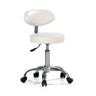 Ergo Salon Chair White